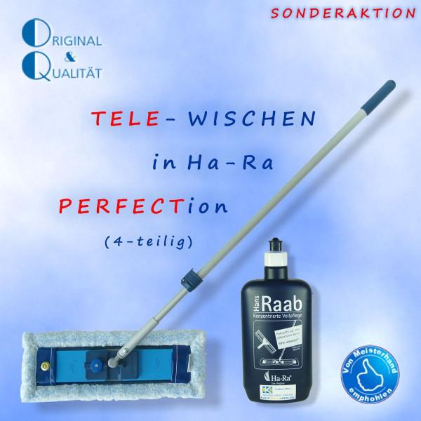 Ha-Ra Tele-Wischen (4er-Set) NG Igel