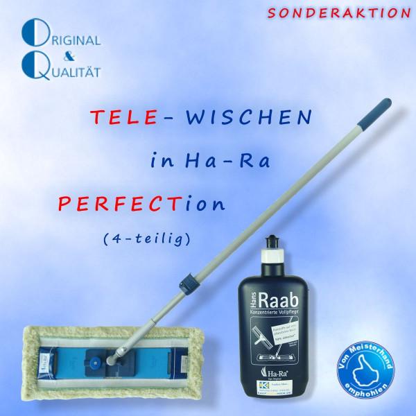 """Ha-Ra Tele-Wischen (4er-Set) """"Grün"""""""